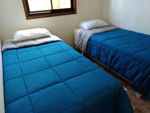Cabañas Soto Aguilar 253, Apartmány  Valdivia - big - 2