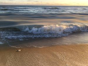 Sea Lion, Ferienhäuser  Nantucket - big - 15