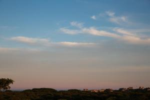 Sea Lion, Dovolenkové domy  Nantucket - big - 26