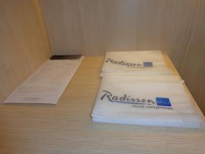 Radisson Blu Pune Hinjawadi, Отели  Пуне - big - 11