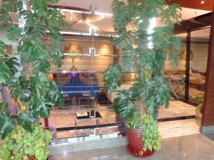 Radisson Blu Pune Hinjawadi, Hotels  Pune - big - 43