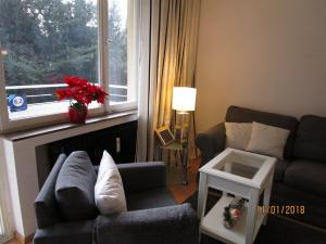 obrázek - Studio Apartment Sonnenbühl