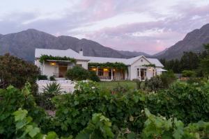 Cape Vue Country House, Penzióny  Franschhoek - big - 19