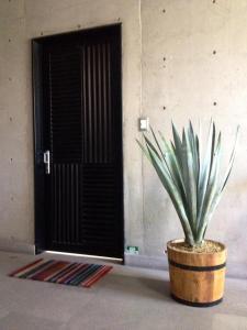 Departamento Yucantán Condesa, Ferienwohnungen  Mexiko-Stadt - big - 1