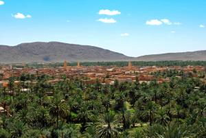 Residence Rosas, Guest houses  Ouarzazate - big - 34