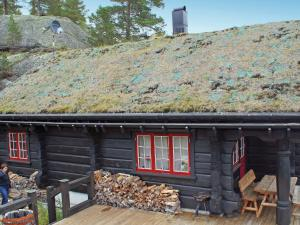 Four Bedroom Holiday home in Åseral 4