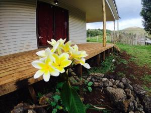 Hani Rapanui Lodge, Дома для отпуска  Ханга-Роа - big - 21
