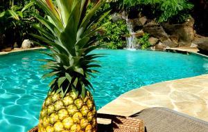 Paradise Pool Home, Ferienhäuser  Princeville - big - 9