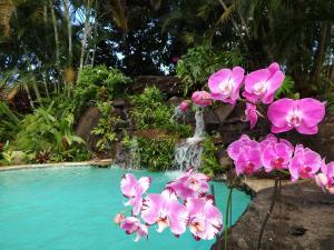 Paradise Pool Home, Ferienhäuser  Princeville - big - 17