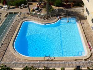 #223 At Surf Song Resort, Ferienwohnungen  St Pete Beach - big - 17