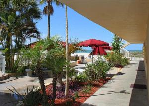 #118 At Surf Song Resort, Apartmány  St Pete Beach - big - 23