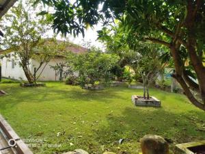 Bagan Lalang Homestay, Priváty  Kampong Jelutong - big - 25