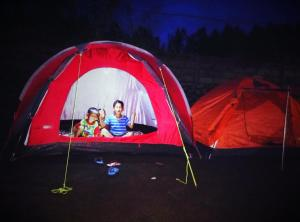 Budget Twin Room - Bed Bali Volcano Camping