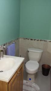 Dorchester Suites, Appartamenti  Kingston - big - 11