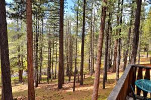 River View Cabin, Case vacanze  South Lake Tahoe - big - 13