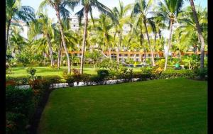 Playa Royale T2 2101 Apartment, Appartamenti  Puerto Vallarta - big - 19