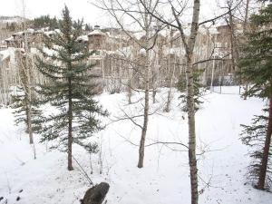 Beaver Creek Condo - Townsend 207 Condo, Apartmanok  Beaver Creek - big - 12