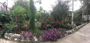 U Norika i Susanny Guest House, Penziony – hostince  Alakhadzi - big - 34