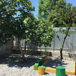 U Norika i Susanny Guest House, Penziony – hostince  Alakhadzi - big - 35