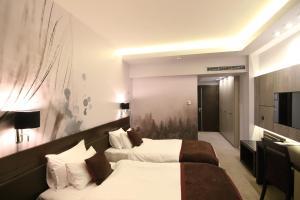 Queen's Hotel, Отели  Скопье - big - 12