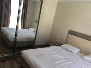 Apartments in Bakuriani on Didveli, Appartamenti  Bakuriani - big - 49
