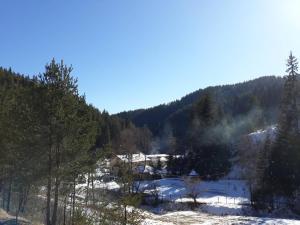 Villa Chaushevi, Vily  Pletena - big - 26