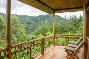 Ichumbi Gorilla Lodge, Chaty v prírode  Kisoro - big - 31