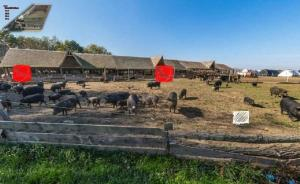 Farm stay Orlov put, Farmy  Bilje - big - 12