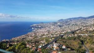 obrázek - Madeira Happy Hostel