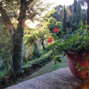 obrázek - Bassetto Guesthouse