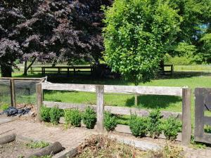 Little Paradise, Farm stays  Tamahere - big - 24