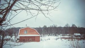 Dom-banya Yagodka, Country houses  Selishche - big - 19