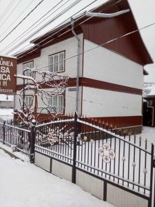 Pensiunea Casa Rodica, Гостевые дома  Гура-Гуморулуй - big - 1