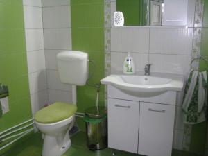 Pensiunea Casa Rodica, Гостевые дома  Гура-Гуморулуй - big - 71