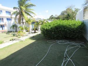 Caracuchas Marinas, Hotely  Coveñas - big - 14