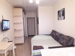 Apartment near Alekseevskaya (229)