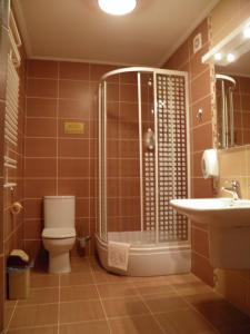 Отель Магнат - фото 15