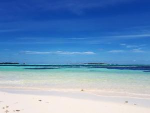 Luxury Beach Maldives, Affittacamere  Guraidhoo - big - 9