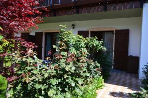 Casa Collini, Ferienwohnungen  Pinzolo - big - 88