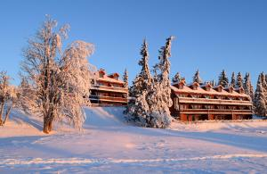 obrázek - Nordseter Apartments