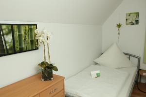 Gästehaus zur Linde, Affittacamere  Ingolstadt - big - 14