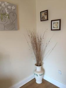 Jury's City Centre Apartment, Case vacanze  Galway - big - 6