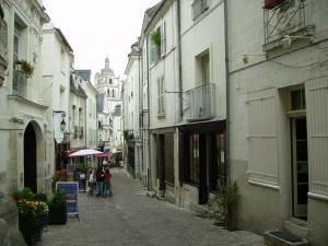 La Demeure Saint-Ours, Bed and Breakfasts  Loches - big - 33