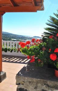 Casitas Rosheli, Apartmány  Los Llanos de Aridane - big - 24