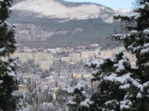 Апартаменты у Приморского Парка, Апартаменты  Ялта - big - 41
