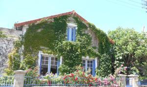 Le Bois des Nids - Accommodation - Lurcy-Lévis