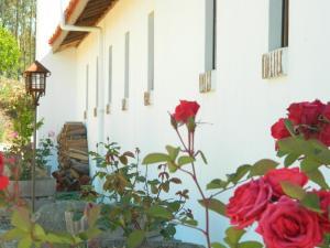 La Mirage Parador, Hotels  Algarrobo - big - 41