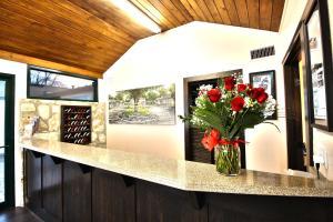 Peach Tree Inn & Suites, Hotely  Fredericksburg - big - 46