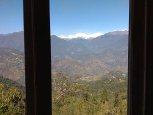 The Ace Pine Valley, Hotels  Pelling - big - 18