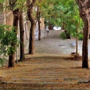 La Terrazza della Lilli, Holiday homes  La Spezia - big - 6